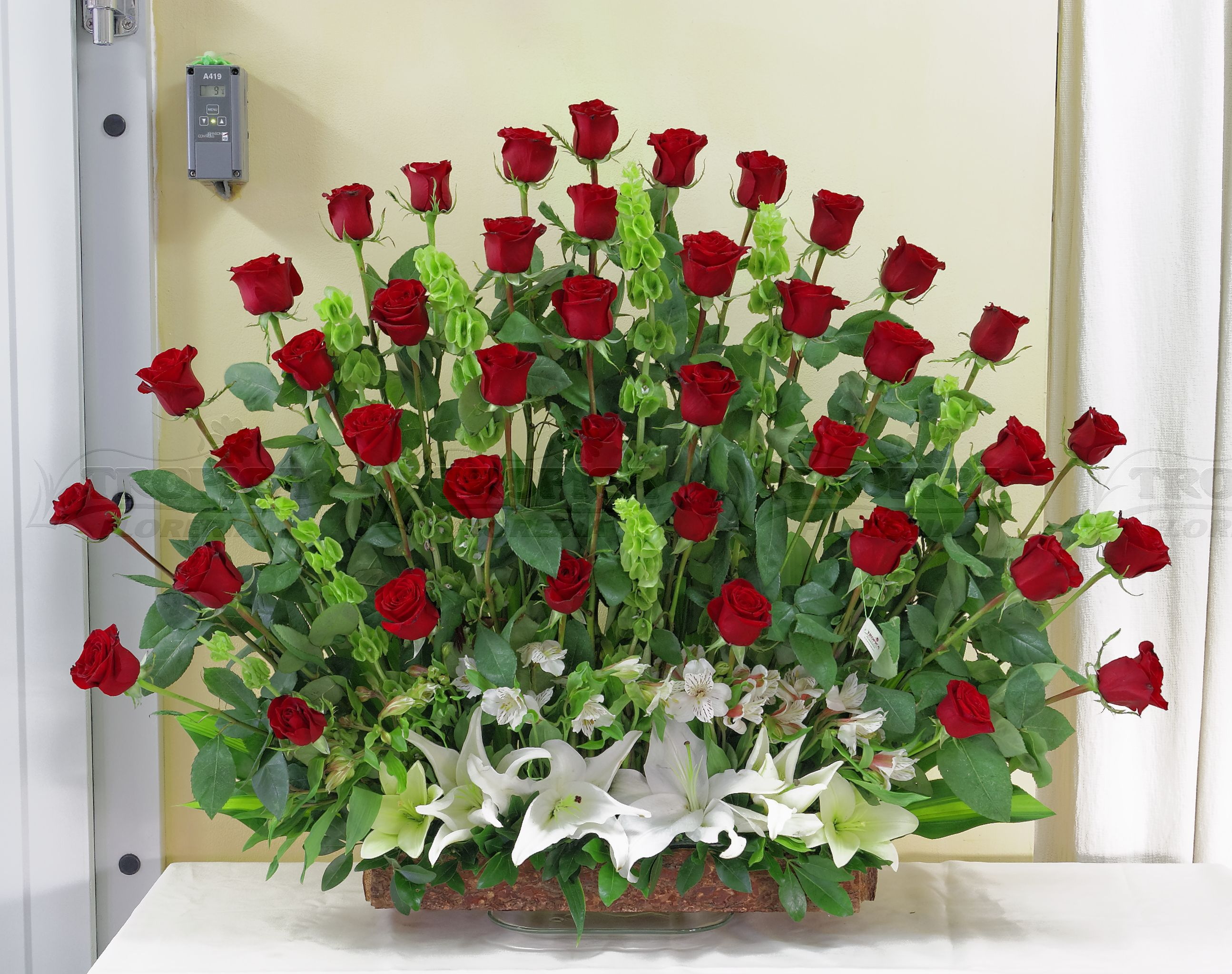 Arreglo abanico con 50 rosas tropica floreria buket pinterest arreglo abanico con 50 rosas tropica floreria izmirmasajfo