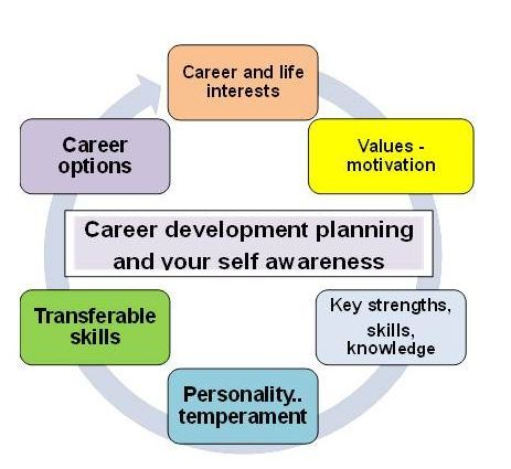 how to choose your future career quiz