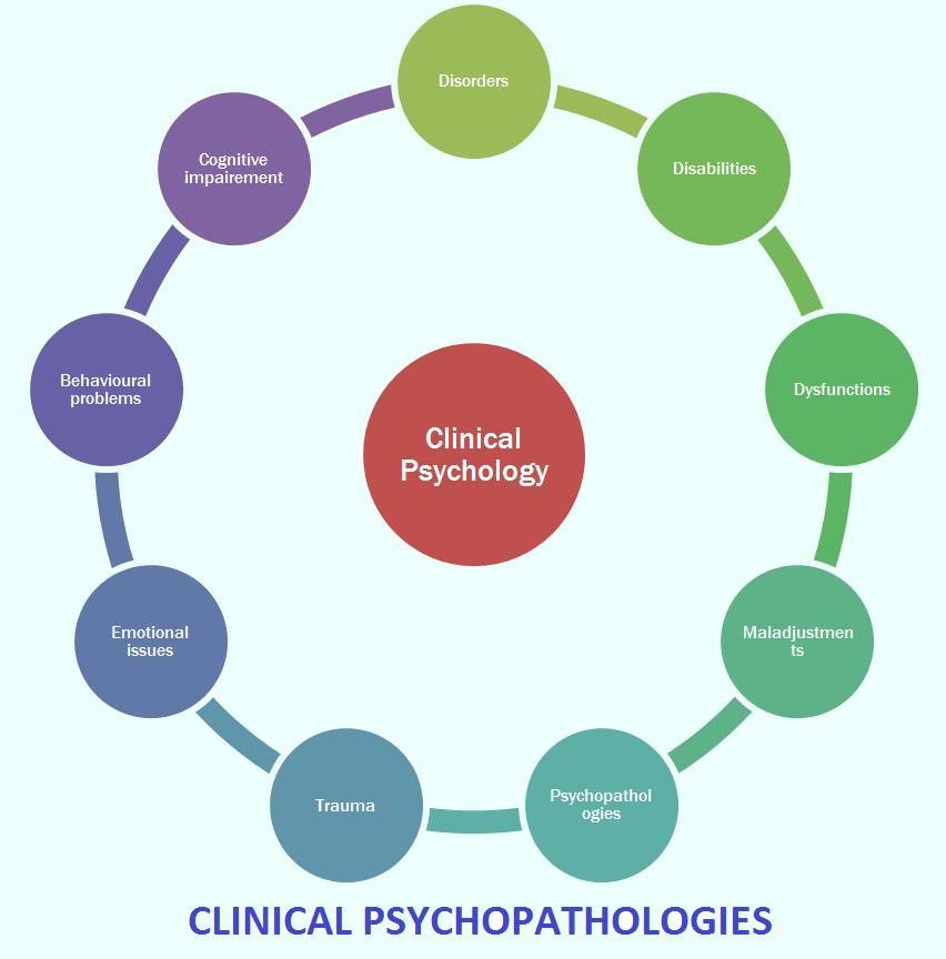 Psychology B.A./B.S.
