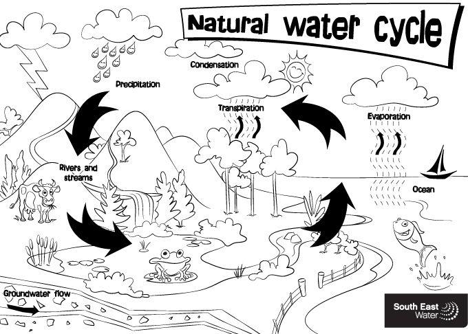 Water Resource Natural Water Cycle Colouring Sheet Water Cycle