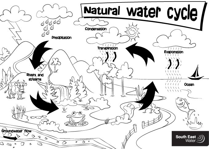 Water Resource Natural Water Cycle Colouring Sheet Water Cycle