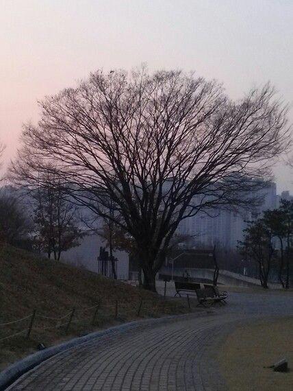 130404 서울시 송파구 오륜동 88-22