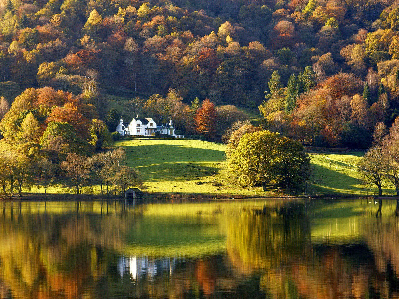 Amazing Beautiful Forest Nature Colorful Autumn Perfect Peace Dream Gorgeous Inspiration Natural Art Poster Print 4x6 8 5x11 11x17 18x24 24x36 Lake District England Lake District Lake Landscape