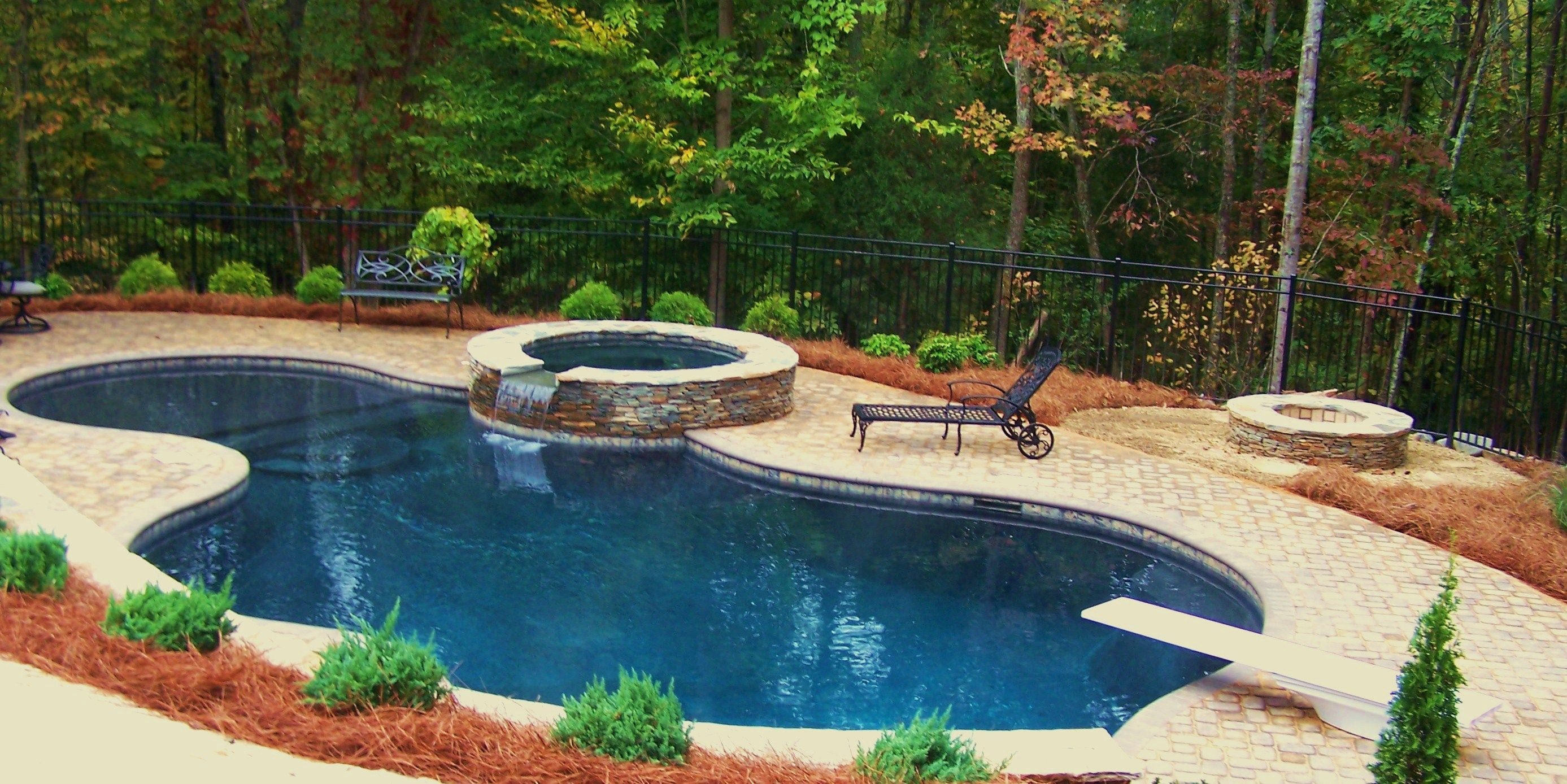 Basic lagoon type pool pool designs swimming pools for Pool design types