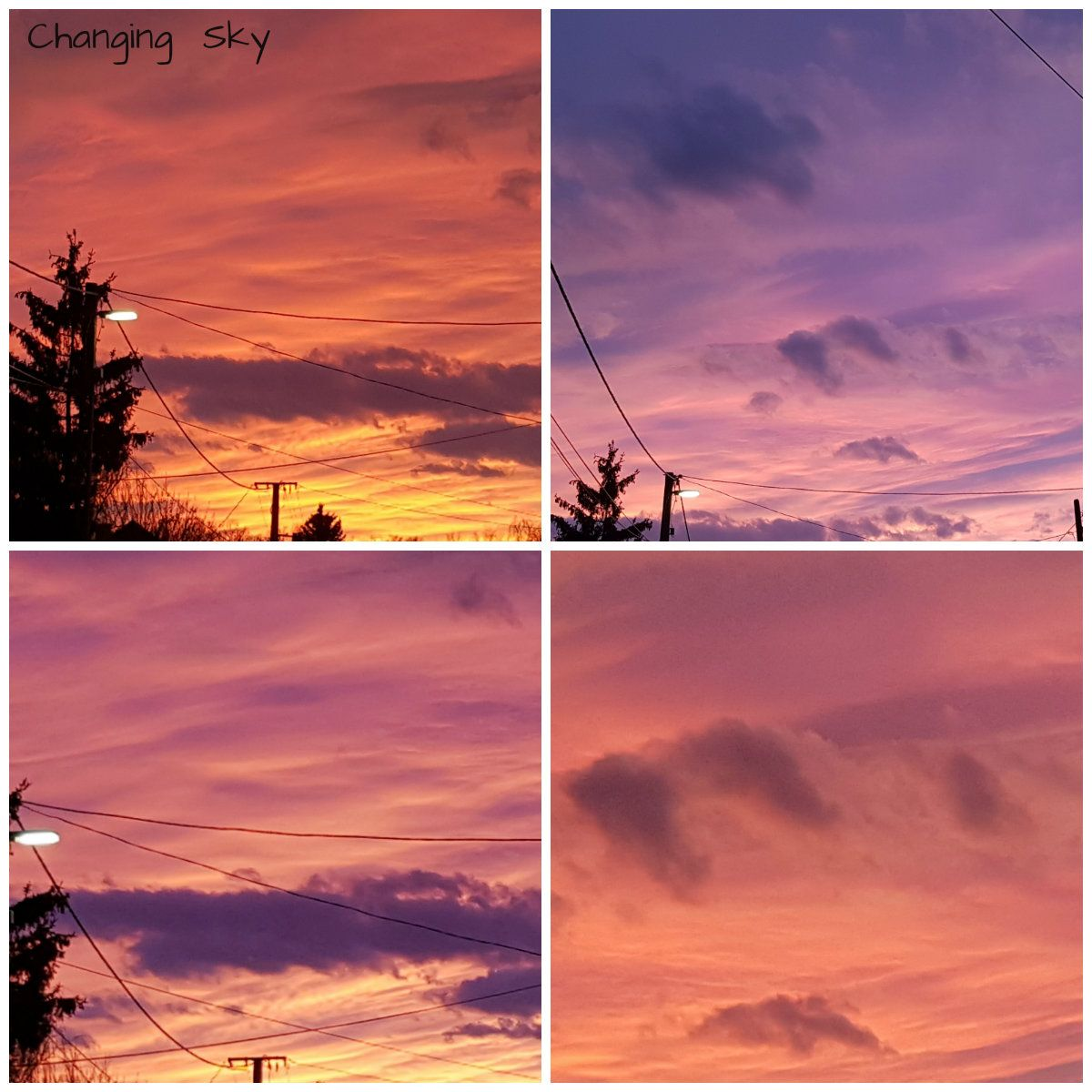 What A Beautiful Sunset Tonight Within The Space Of 8 Minutes The Sky Dramatically Changed Sunset Tonight Beautiful Sunset Beautiful