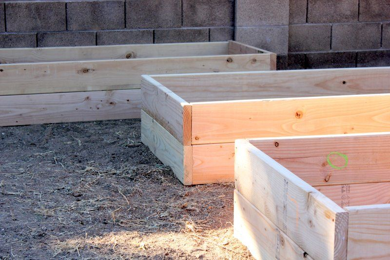 Perfect The Best Material For Raised Garden Boxes
