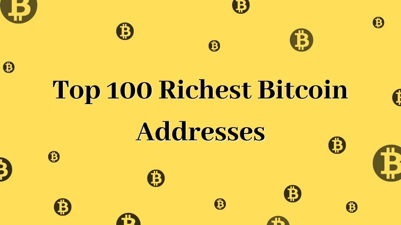 bitcoin top 100