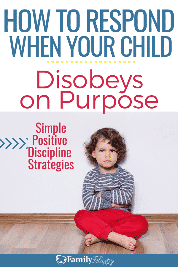 Photo of Surprising Causes of Child Disobedience and How to Finally Break the Cycle – FamilyFelicity.com