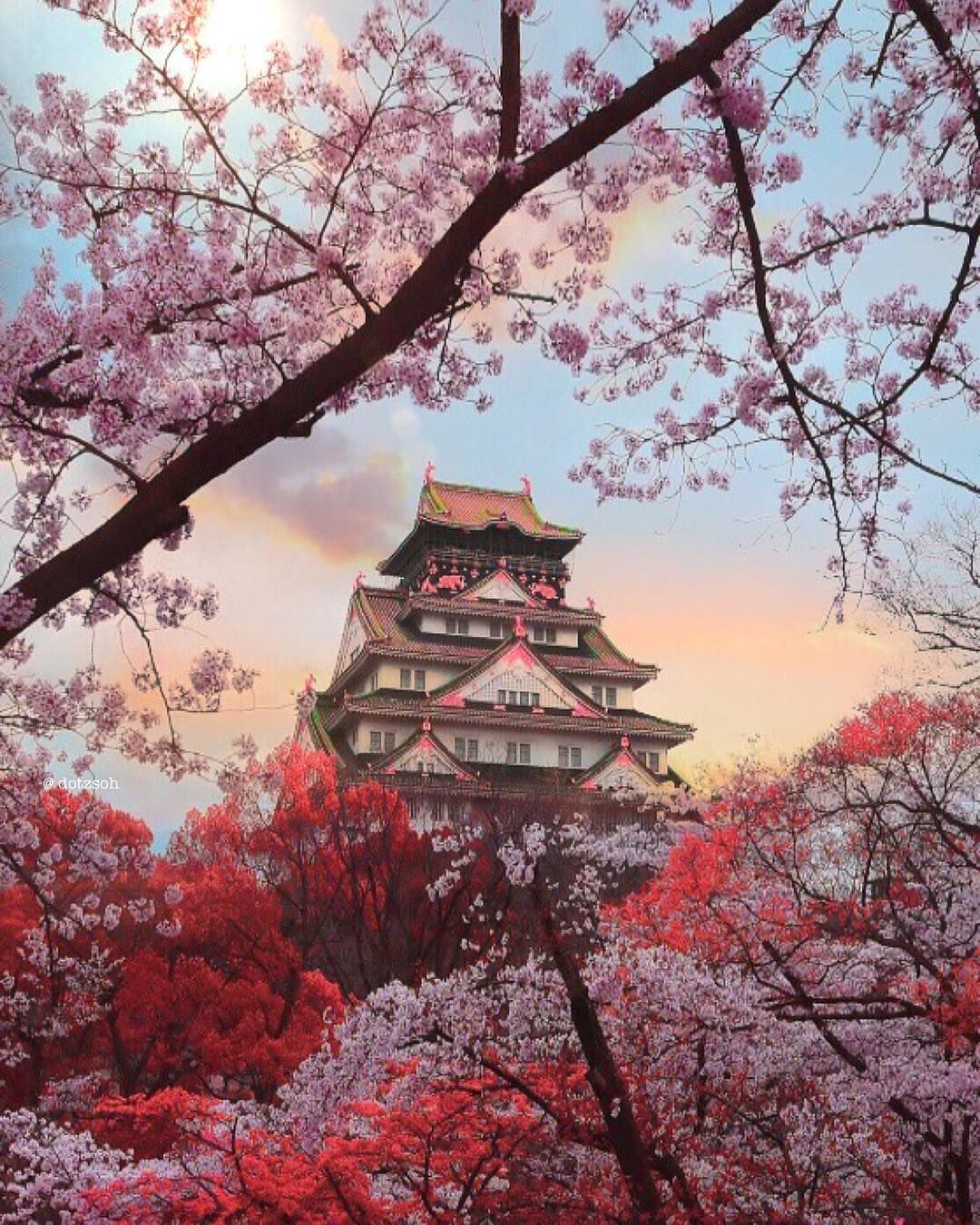Is Travel Insurance Necessary When Travelling Abroad Cherry Blossom Japan Japan Photo Japanese Castle