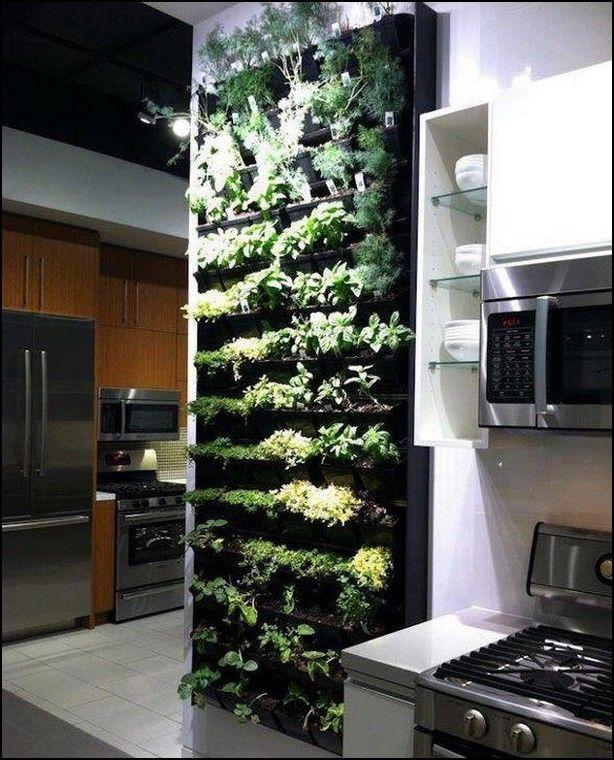 20 Beautiful Indoor Garden Design Ideas Indoor herbs Herbs