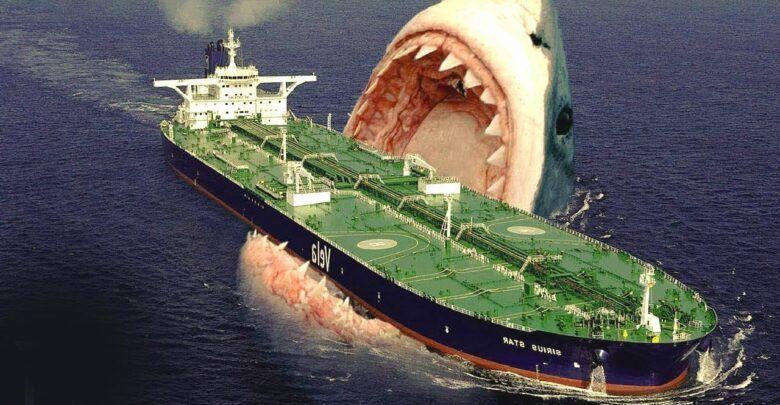 اكبر سمكة قرش موجودة في العالم تعرف عليها هنا Mysterious Events Megalodon Shark Megalodon