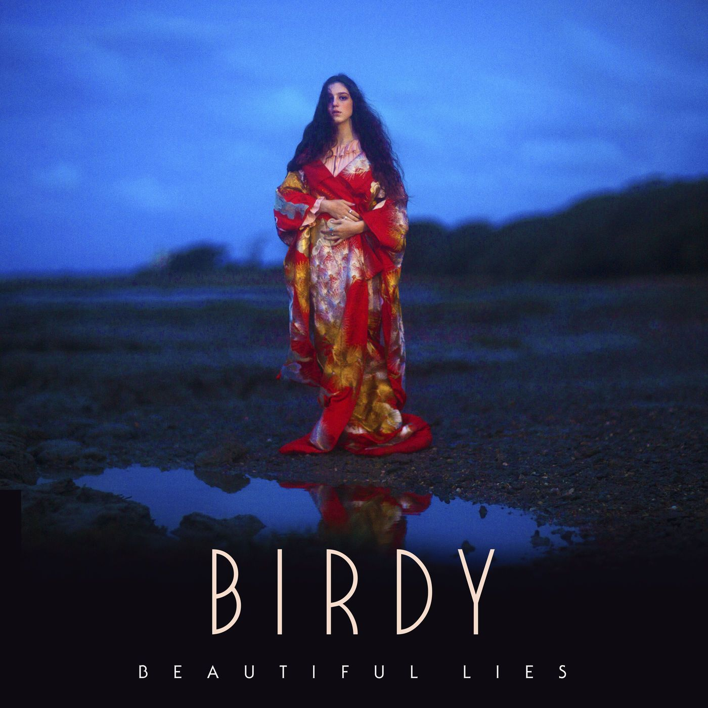 Resultado de imagem para birdy beautiful lies album cover