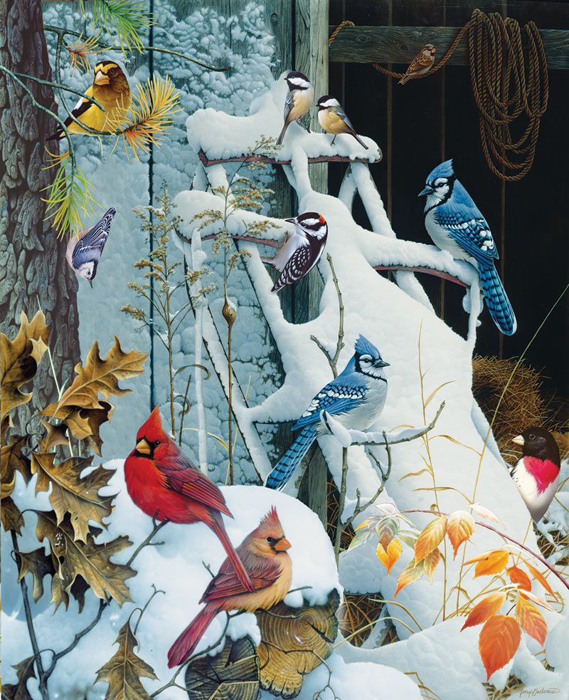 Winter Perch Birds in Snow 1000 pc Jigsaw by Artist William Vanderdasson 1000 Piece Jigsaw Puzzle for Adults Bits and Pieces