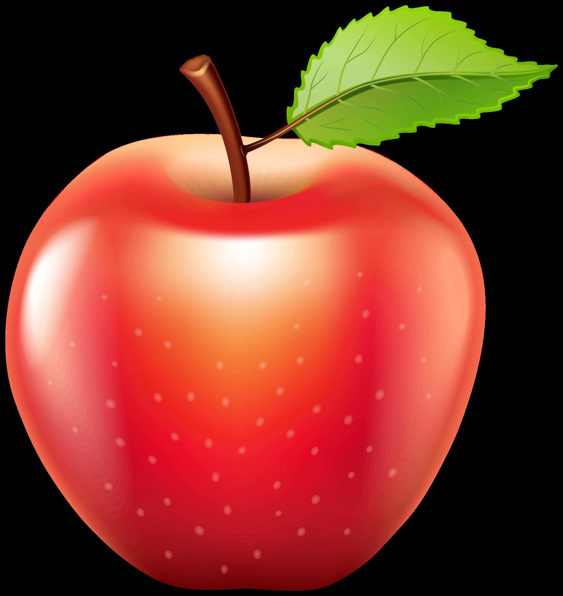 Png Apple Clipart Bunga Bunga Rajut Gambar