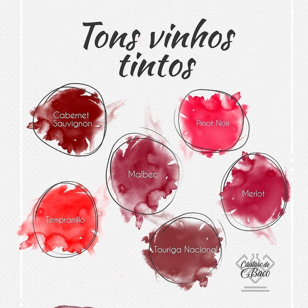 🍷 ꕷ𝖎𝖌𝖆 @𝖈𝖆𝖓𝖙𝖆𝖗𝖔ɗ𝖊ᵬ𝖆𝖈𝖔 𝖕𝖆𝖗𝖆 ɗ𝖊ʂ𝖈𝖔𝖒𝖕𝖑𝖎𝖈𝖆𝖗 𝖔 𝖚𝖓𝖎𝛎𝖊𝖗ʂ𝖔 ɗ𝖔 ᕓ𝖎𝖓𝖍𝖔🍇 . Qual ton mais lhe agrada? 🍷🍇 .  #CantarodeBaco #vinhozinho #vinhoterapia #vinhodoporto #vinhosdeportugal #vinhotododia #vinhorose #vinhochileno #vinhoportugues #vinhosempre #vinhoévida #vinhobom #amantesdovinho #vinhobrasileiro #vinhosportugueses #vinhoargentino #vinhosequeijos #vinhododia #vinhoverde #organicwine #vinito #enoteca #vinoargentino #degustazione #winemaker #cabernet #winelove