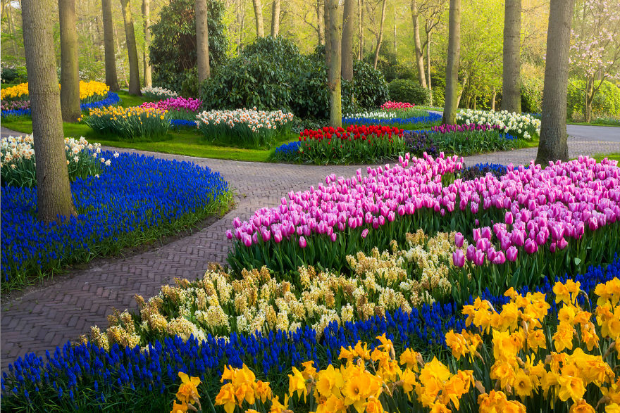 The Most Beautiful Flower Garden In The World Has No Visitors For The First Time In 71 Years And I Got To Capture It 31 Pics In 2020 Most Beautiful Gardens
