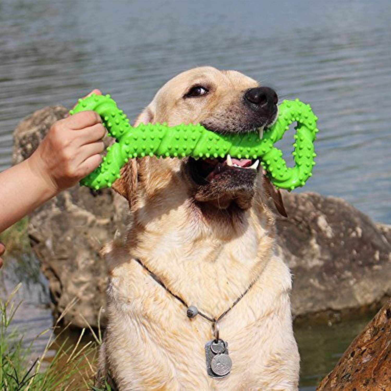 Blueisland Durable Dog Chew Toys 13 Inch Bone Shape Extra Large