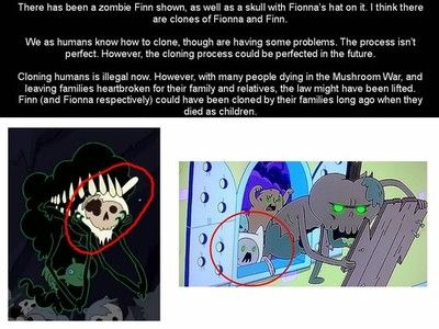 Please No Please Let This Be Fake Wait Does That Me Finn