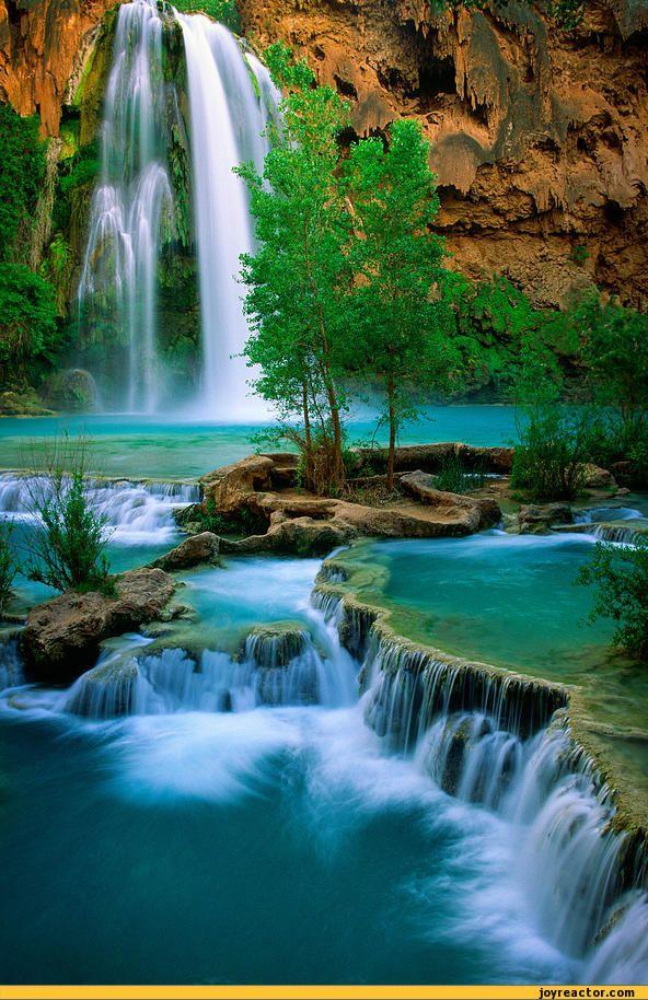 havasu-falls-photo-waterfall-614923.jpeg (592×914)