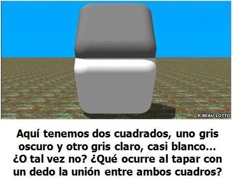 Ilusiones Opticas Cubos Grises Y Blancos Gris Y Blanco