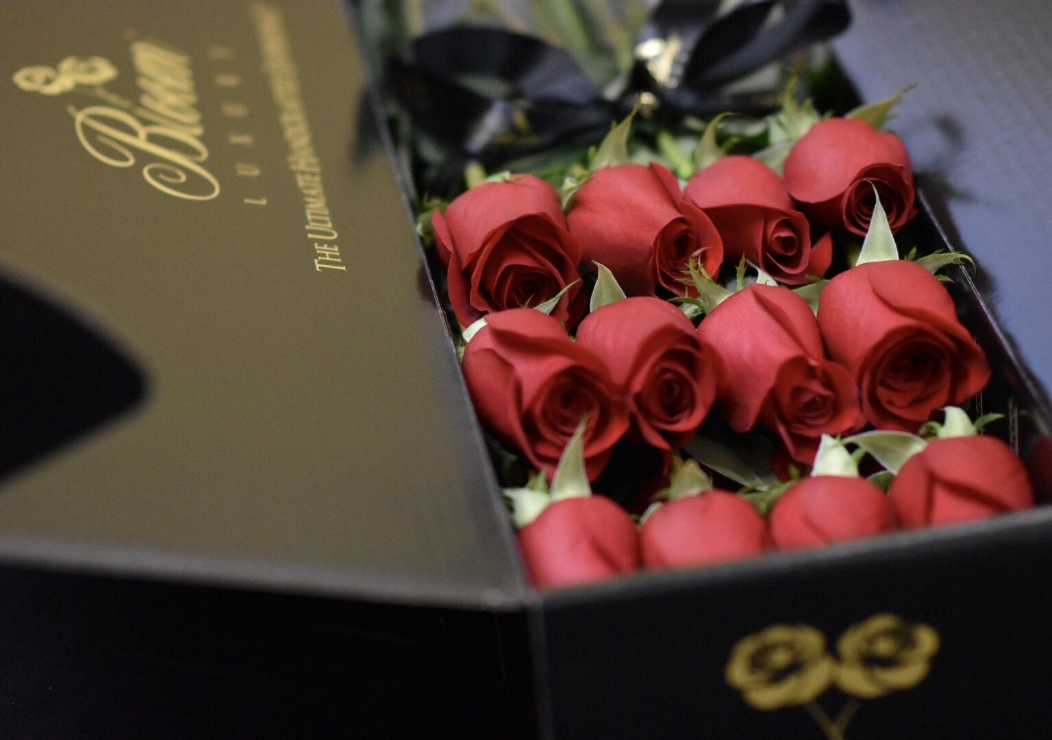 Luxury Roses in a Box Box of Roses Delivery Bloom