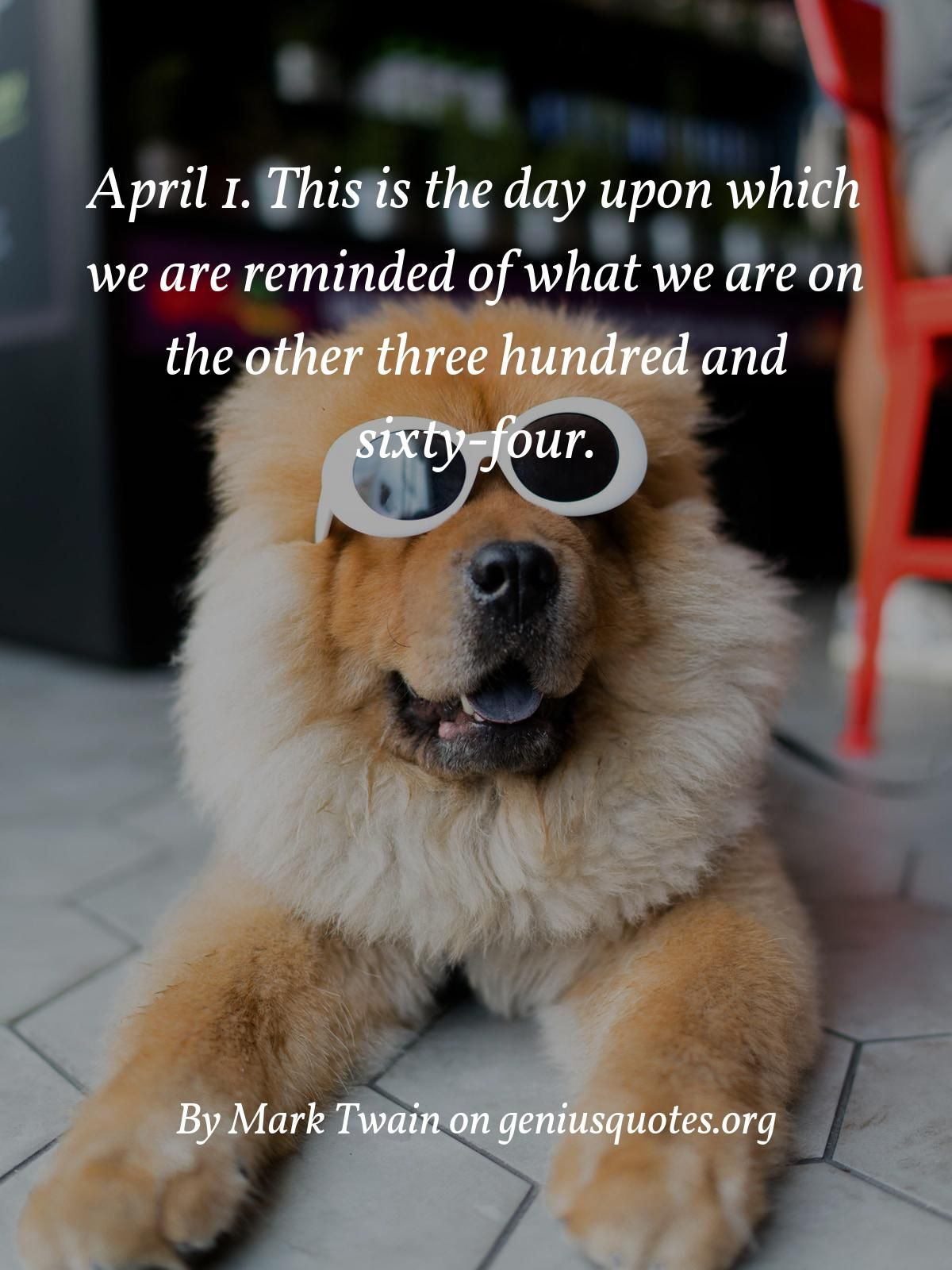 April 1 This Is The Day Upon Which We Are Reminded Of What We Are On The Other Three Hundred And Sixty Four Funny Inspirational Quotes Quotes History Quotes