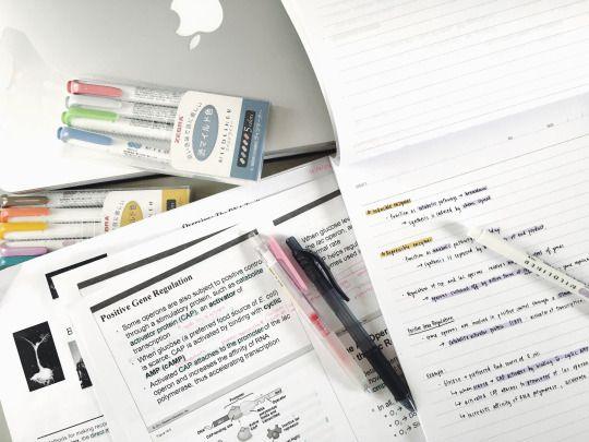 #studytime #studynotes #study #estudio #studyblr