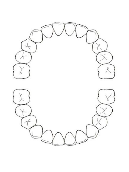 Super schéma+dent+enfant+et+bébé.jpg 434×577 pixels | BB et grossesse  SD67