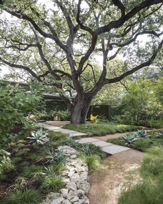 Photo of 10 mejores tendencias de diseño de jardines para el otoño de 2016 – Gardenista