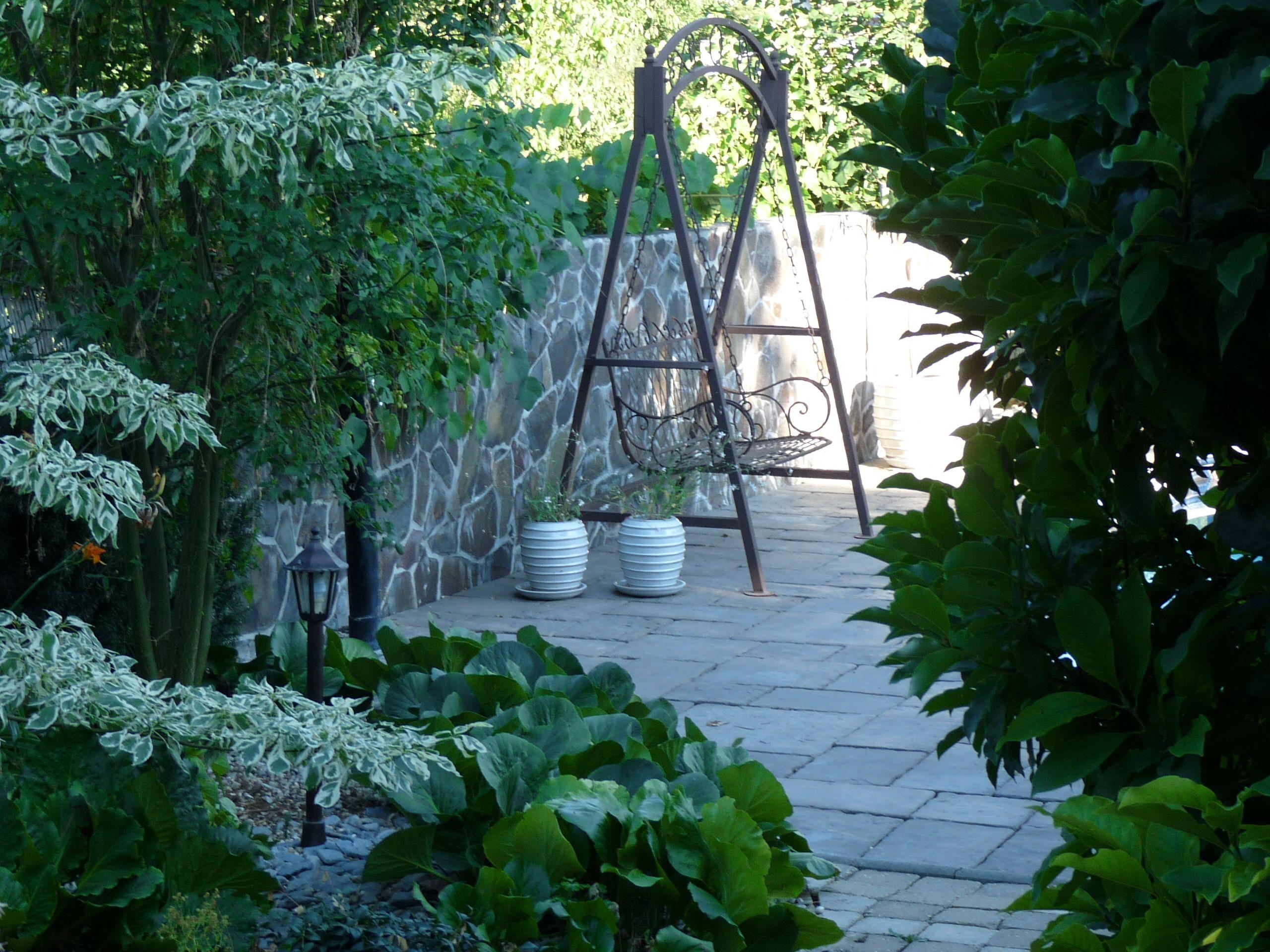 Swing near the swimming pool garden changes pinterest swimming