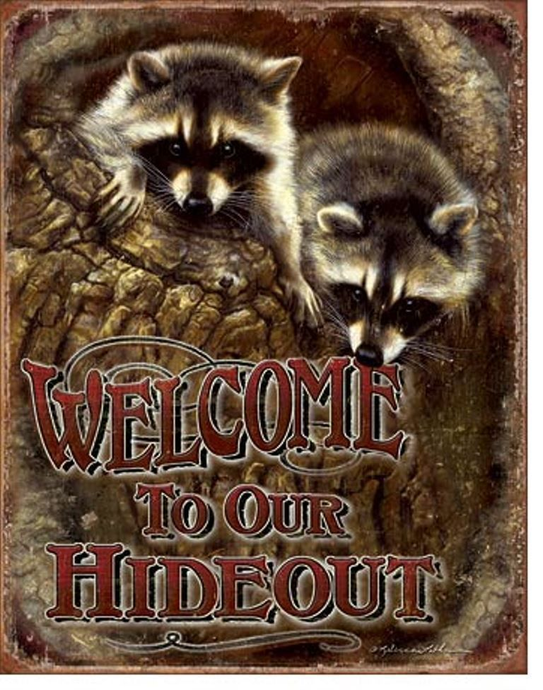 Raccoons welcome wildlife cabin house animal gift picture wall raccoons welcome wildlife cabin house animal gift picture wall decor metal sign sciox Images