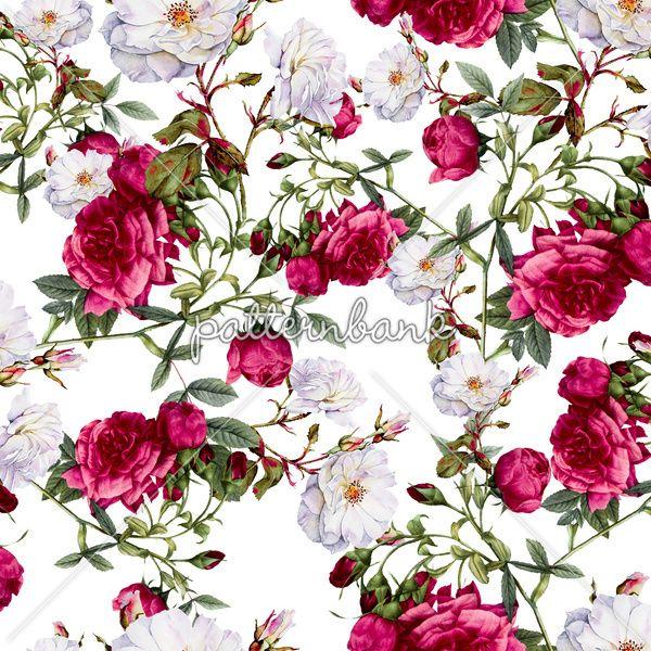 Vintage Roses On White Background By Vs Fashion Studio Seamless