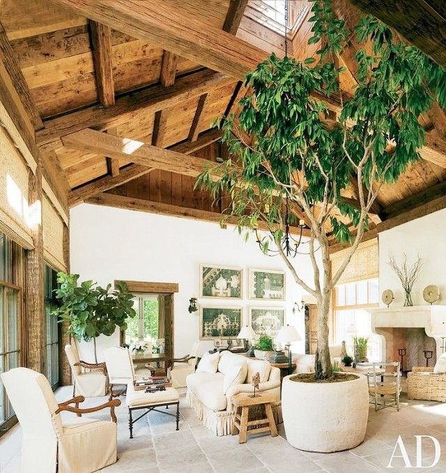 A Rustic Living Space With Exposed Beams, White Furniture, And A Large Indoor  Tree