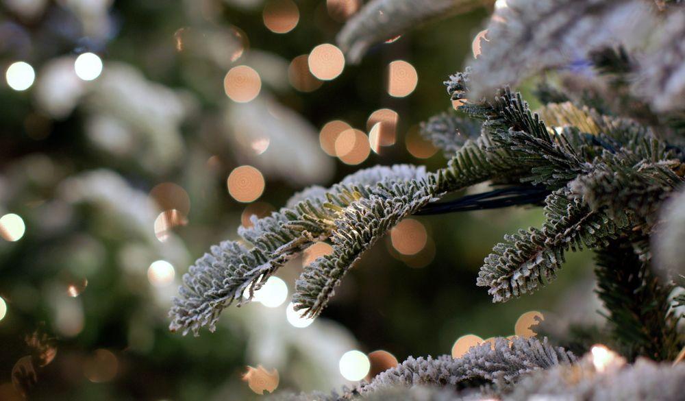 #winter #wonderland #LOVOO