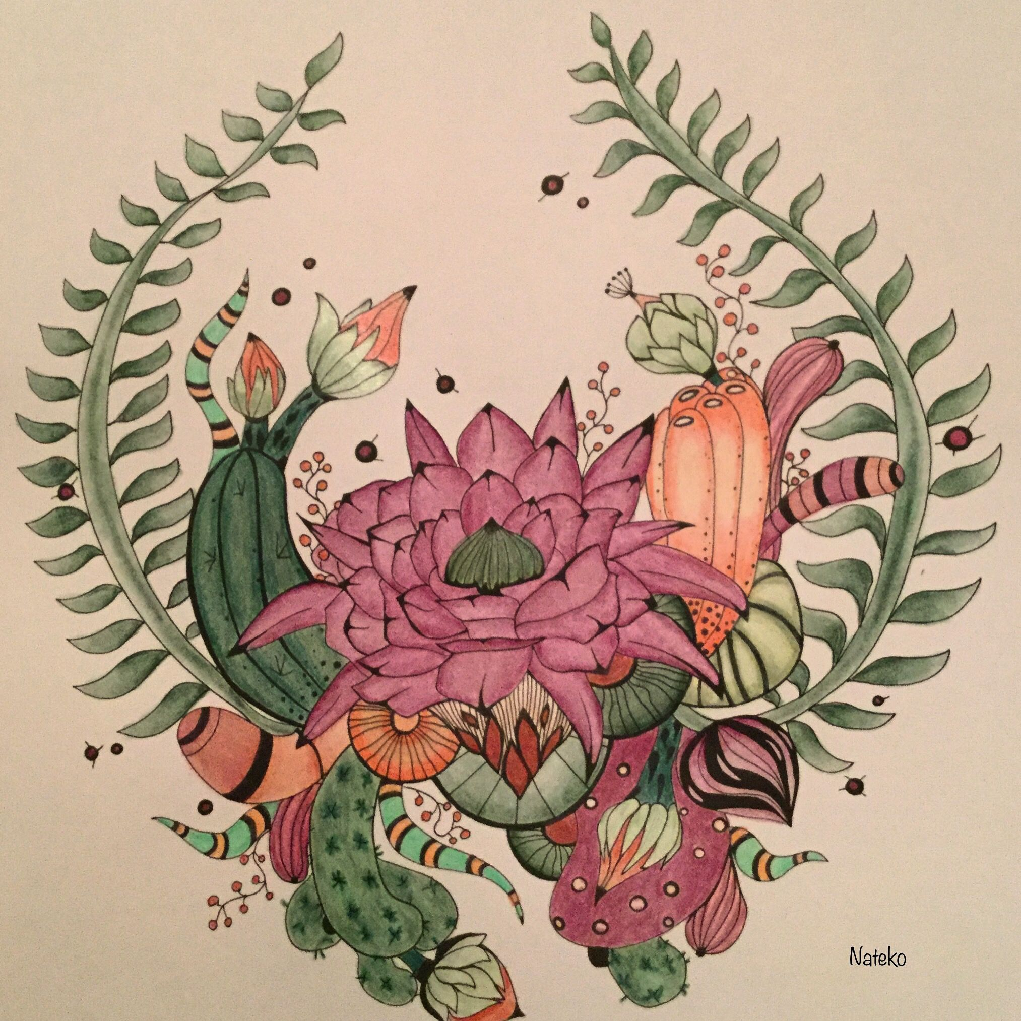 Botanical art coloring book - My Coloring Rachel Reinert Botanical Wonderland Desert Wonderland Johanna Basfordcoloring Booksdesertswonderlandpencilcoloringpaintings