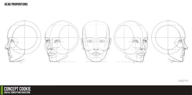 #drawing Head Proportions Reference Resource by