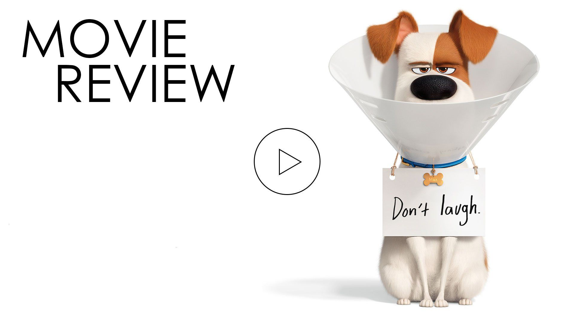The Secret Life Of Pets 2 Video Review Movieguide Movie Reviews For Christians Https Www Movieguide Org Watch Secret Life Of Pets Secret Life Secret Live