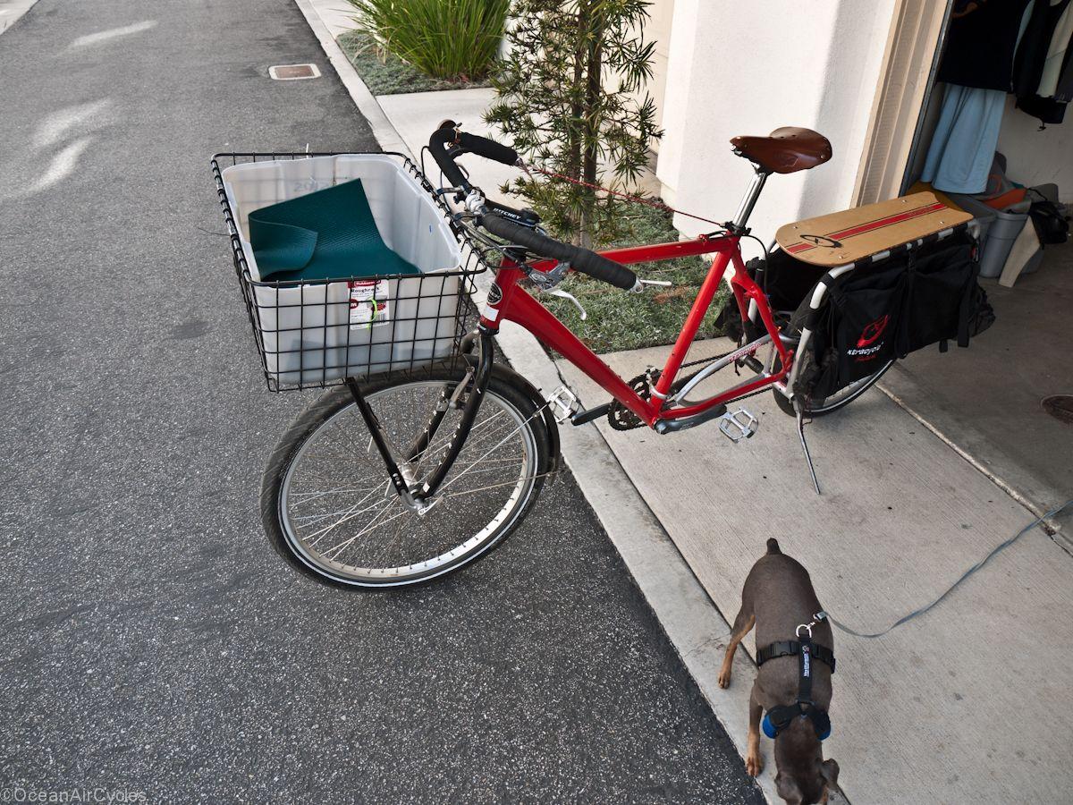 Front Bike Rack Dog Carrier Diy Dog Stuff Dog Carrier Dog Bike