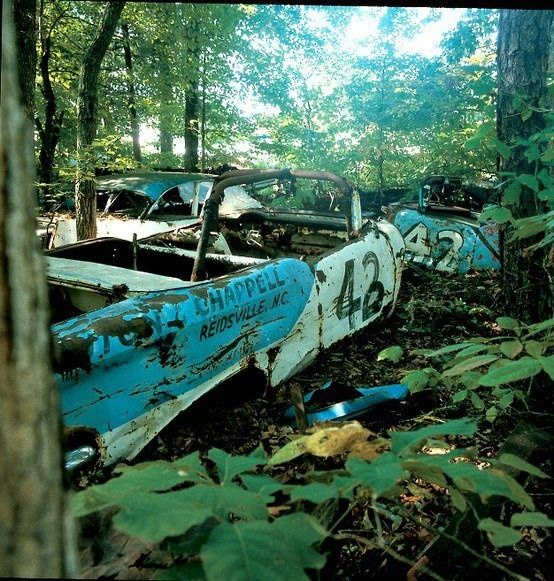 Old NASCAR Racing Cars In The Woods.