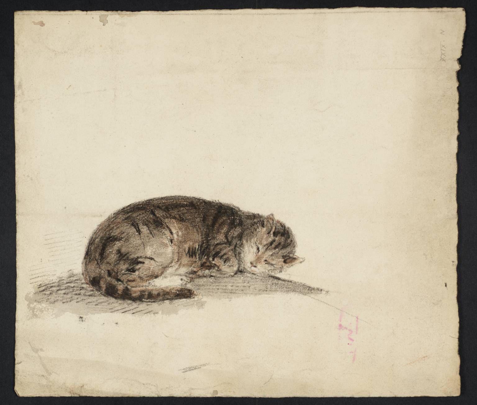 Gwen John 1876-1936 British Cats In Art-20th Century Great Cat