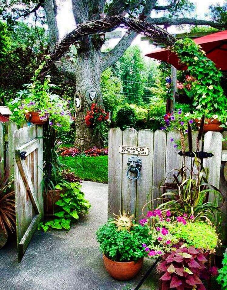 Beautiful eclectic garden space.