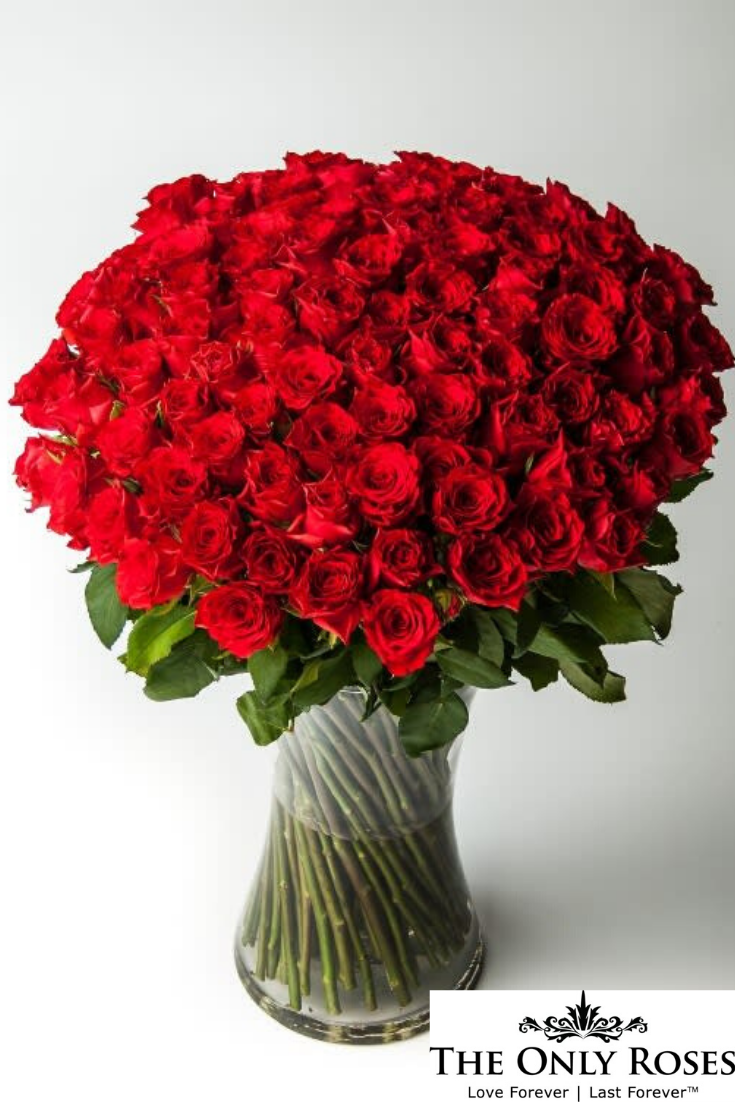 One Dozen 12 Long Stem Red Preserved Roses Luxury Bouquet In Glass Vase Luxury Bouquet Flower Bouquet Delivery Birthday Flowers Bouquet
