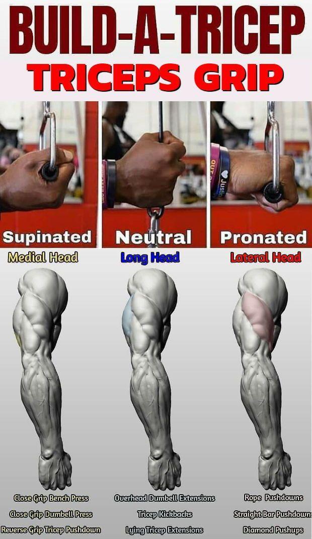 Muskel, der Superset-Schocker für Kasten und Trizeps definiert #trapsworkout