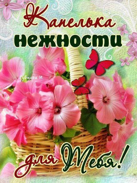 Нежная открытка для Тебя с цветам… | Открытки, Цветы и Подруги