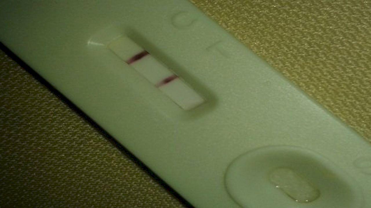 تحليل الحمل المنزلي وطريقة استخدامه Apple Magic Mouse Magic Mouse Apple Magic