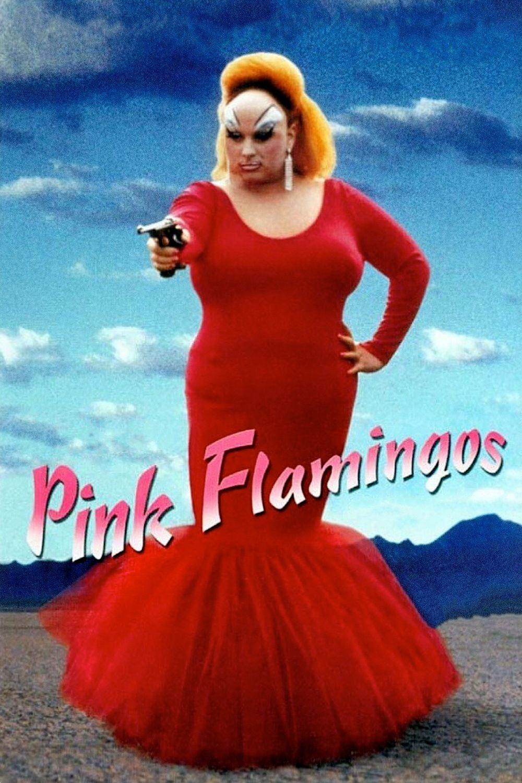 Pink Flamingos Stream