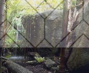 9+ Incredible Garden Ideas Grey Fence Ideas | 1000