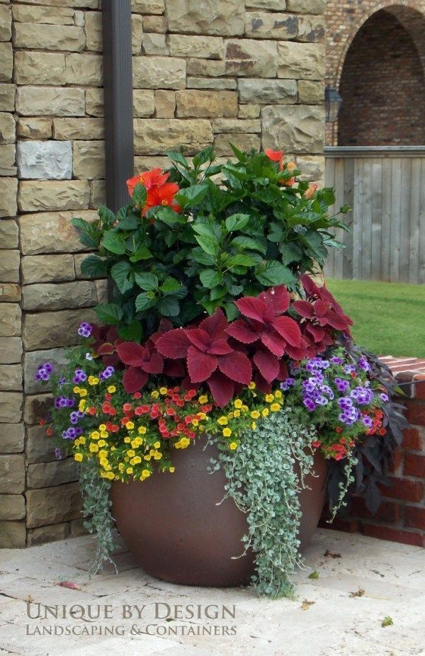 8 Stunning Container Gardening Ideas | Gardens, Spring and Container ...