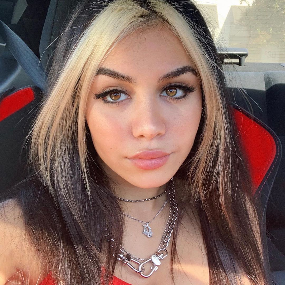 Tara On Instagram Swipe For A Surprise Aesthetic Hair Hair Color Streaks Hair Streaks