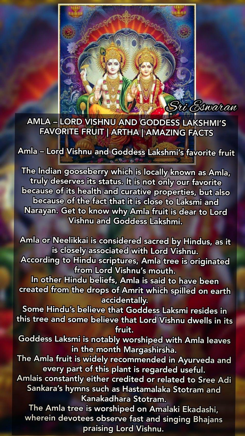 AMLA – LORD VISHNU AND GODDESS LAKSHMI'S FAVORITE FRUIT